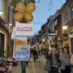 Alloza_02
